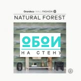 Каталог Natural Forest