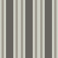Обои Cole&Son Marquee Stripes 110-1001