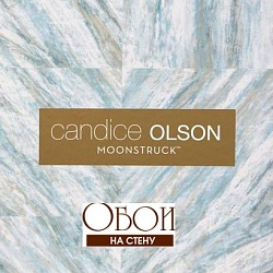 Каталог Candice Olson Moonstruck